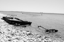 Day 3 Gallipoli W Beach 2 (BW)